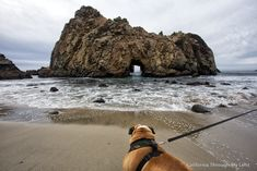 I literally stumbled upon this state beach during a recent trip up the coast and boy was it awesome. After visiting the McWay Waterfallin Julia Burns State Park I was looking over some pictures of Big Sur I had pulled up on my phone and noticed the rock with a hole, that is a staple …
