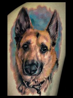 Tattoo Portfolio, Dog Portraits, Folk, Tattoos, Painting, Animals, Art, Art Background, Tatuajes