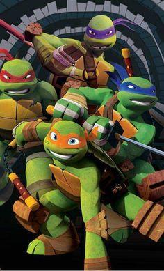 2002 ORIGINALE *** DON DONATELLO COMPLETA *** Teenage Mutant Ninja Turtles TMNT