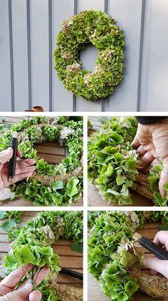 Hageeksperten tipser: Slik lager du høstkrans av hortensiaNyt høsten med flotte kranser du enkelt lager selv Dette er et innlegg fra Espen Skarphagen bak bloggen skarpihagen.no og Instagram-kontoen @skarpihagen.   #hortensia #høstkrans #hyggelig #koselig #pynt #dekorasjon #krans #interiør Plants, Plant, Planting, Planets