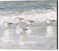 Sandpipers Canvas Print featuring the painting Sandpipers On Siesta Key by Shawn McLoughlin