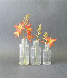 3 Small Vintage Glass Bottles Collection by PaisleyzPark on Etsy, $15.00