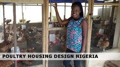 A well thought out approach to building a durable poultry house acclimatised to Nigerian climate is an essential investment for budding poultry farmers. Poultry Cage, Poultry House, Starting A Coffee Shop, Igbo Bride, Portable Chicken Coop, Consumer Marketing, Well Thought Out, Baby Chicks, Starting Your Own Business