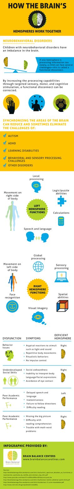 How The Brains Hemispheres Work Together [Infographic]
