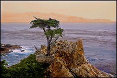 Monterey, California, Photo Roberto Portolese