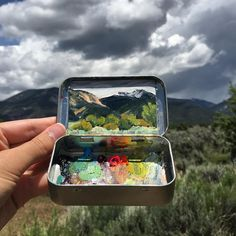 3,824 отметок «Нравится», 24 комментариев — Heidi Annalise (@heidi.annalise.art) в Instagram: «One more from my drive home, passing through Taos. Sage country!  This and other New Mexico mint…»