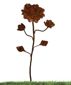 Look at this Rose Plant Pick on #zulily today!