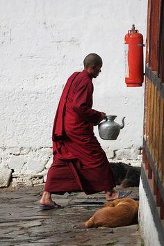 A Monk's Life . Bhutan