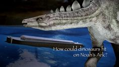 That's a Fact - Dinosaurs on Noah's Ark