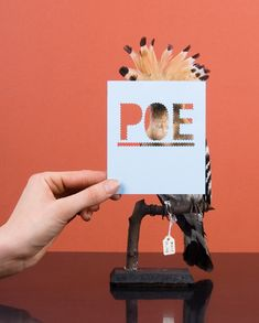 """Poe"" : Stuffed bird + cut paper typography by RAW COLOR."