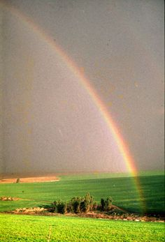 The Hills of Manasseh Israel ...Rainbows are so much prettier in The Promise Land.