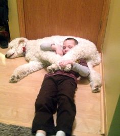 A beautiful moment between a child with autism and his service dog. Featured by Special Learning House. www.speciallearninghouse.com.