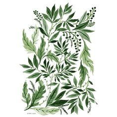 Green Leaves, an art print by Vikki Chu ($15) ❤ liked on Polyvore featuring backgrounds, fillers, plants, green, decoration, embellishments, text, detail, borders and scribble