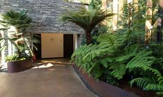 Entry court with Palsm and ferns   Flickr - Photo Sharing!
