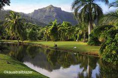 """One of Kauai's best """"view"""" hike. Sleeping Giant  #trailblazerhawaii.com  http://www.barnesandnoble.com/w/kauai-trailblazer-jerry-sprout/1100124544"""