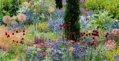 North Oxfordshire garden. Tom Stuart-Smith, designer. Photo by Stephen Robson