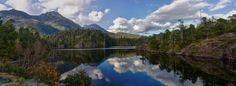 Near Kennedy Lake between Port Alberni and Tofino