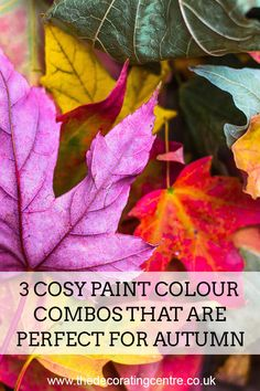 Autumn interior decor - 3 cosy paint colour combos that are perfect for autumn!