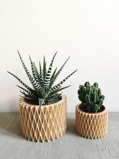 Minimalist Geometric Wood Planter for succulents or cacti /