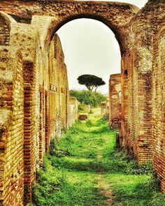 """Once the Way Home"" - Ostia Antica  #photobydperry #ostiaantica #repostromanticitaly #rome #roma #italy #loves_united_lazio #noidiroma #myrome #europe #europa ##wp #discoverglobe #topeuropephoto #architecture #instagood #instatravel #amazing #incredible_italy #awesome_earthpix #Italia_super_pics #ig_italy #ig_rome #loves_united_hdr #going_into_details #loves_united_roma #scavi #excavation #spgitaly #seetoshare"