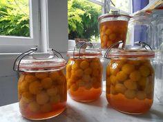 Recette de conserves de prunes mirabelles à l'ancienne La récolte de ces petites prunes joliment dorées est abondante, voici une méthode facile et rapide pour les conserver et en profiter toute l'année. Vous pourrez ensuite en faire des salades de fruits, des tartes, des clafoutis,...
