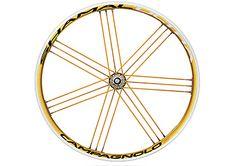 SHAMAL Ferris Wheel, Bike, Bicycle Kick, Trial Bike, Bicycle, Big Wheel