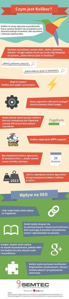Koliber, czyli nowy algorytm Google i skutki jego wprowadzenia (infografika) | portalmedialny.pl