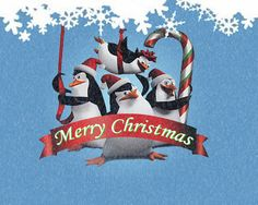 Penguins Of Madagascar Happy Holidays Greetings, Christmas Greetings, Day Countdown, Christmas Countdown, Christmas Door, Merry Christmas, Christmas Ornaments, Penguin World, Christmas Wallpaper