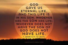 Verse of the Day: Got Life? - 1 John 5:11-12