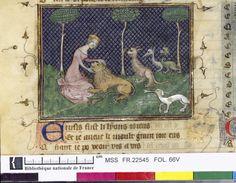 Français 22545, fol. 66v, Lion consolé par la Dame du verger