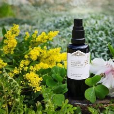 Our Meadow Mind Misting Potion for skin, aura, & home featuring WILD Lavender & Icelandic essences works to purify your aura, remove energetic clutter, & settle an anxious mind. It clears, and refreshes the mind/body for a calm focused demeanor .🏖