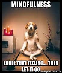 mindfulness memes - Google Search | Holiday memes funny, Happy birthday  yoga, Happy birthday funny