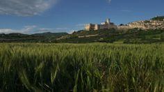 FRAME OF EPISODE 10. SUN 21.30h ib3tv.com #connexiójuníper #Assisi #Italy #juníperoserra