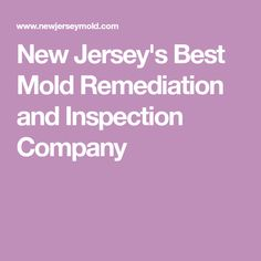 New Jersey's Best Mold Remediation and Inspection Company