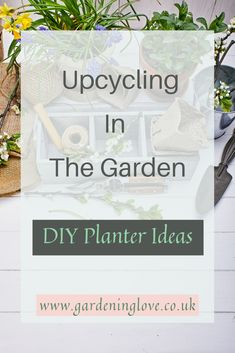Learn how to up cycle in the garden and turn your unwanted items into garden treasure. Recycle old containers into creative and imaginative planters and garden containers. An eco friendly way to garden. Recycling Containers, Container Gardening, Gardening Tips, Recycling Ideas, Diy Planters, Garden Planters, Planter Ideas, Diy Garden Projects, Garden Crafts