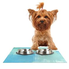 Kess InHouse CarolLynn Tice 'Announced' Aqua Green Feeding Mat for Pet Bowls, 24 by 15-Inch *** You can find out more details at the link of the image. #Cats