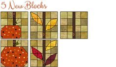Download this beautiful project today! Add 4 new blocks and 32 new fabrics to your QDW, EQ6 or EQ7!