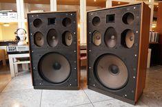 Diy Speakers, Built In Speakers, Stereo Speakers, Hi Fi System, Audio System, Female Poets, High End Audio, Hifi Audio, Loudspeaker