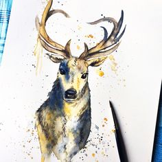 Watercolour stag, custom art, original art, stag art, animal art, watercolour illustration, watercolour painting