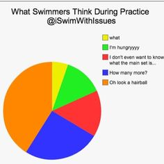 What swimmers think about during practice Swimming Funny, I Love Swimming, Swimming Sport, Swimmer Quotes, Swimmer Girl Problems, Swimming Motivation, Competitive Swimming, Funny Relatable Quotes, Swim Team