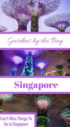 Gardens by the Bay. Can't miss things to do in Singapore. The Garden City, The Lion City or The Little Red Dot, and is a melding of Southeast Asian cultures and people. The climate is tropical with no distinctive seasons and the most common language is En