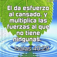 Cajita de Oracion: Sigue confiando y creyendole a Dios....