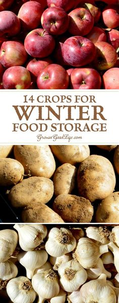 If you have an area in your basement, crawlspace, or garage that stays cool all winter long, you can make use of these cold spots to keep storage crops fresh well into winter.