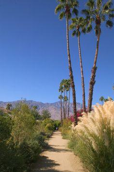 Hiking trails | Palm Springs