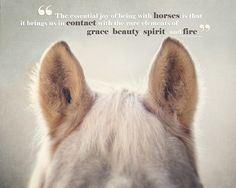 Horse Art, Horse Photography, Horse Quotes, Joy of Horses, Horse Ears, Typography, Text, Type, Horse Quotation, Beige, Tan, Cream. on Etsy, $30.00