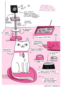 Happy Kitty Holistic Day Spa.... Gemma Correll