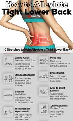 Lower Back Strengthening, Lower Back Pain Exercises, Lower Back Muscles, Stretching Exercises, Lower Back Workouts, Gym Workouts, At Home Workouts, Boxing Workout, Flexibility Workout