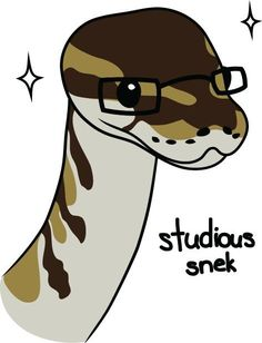 studious snek --- snek with glasses, sparkle --- Les Reptiles, Cute Reptiles, Reptiles And Amphibians, Snake Drawing, Snake Art, Cute Funny Animals, Funny Cute, Cute Drawings, Animal Drawings