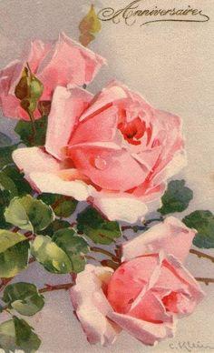 Catherine Klein ~ pink roses. Vintage Floral Pinterest site   http://pinterest.com/meganb84/vintage-floral-graphics/
