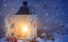 christmas_wonderland_is_magic on Poshinsta Christmas Holidays, Christmas Decorations, Xmas, Christmas Tree, Yule, Whatsapp Wallpaper, Year Of The Rat, Christmas Wonderland, Lanterns Decor